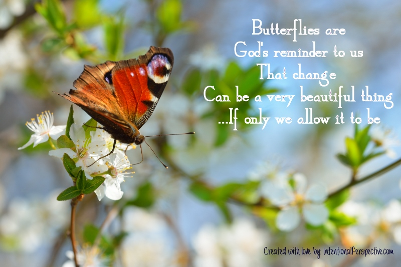 Butterflies are a great reminder...