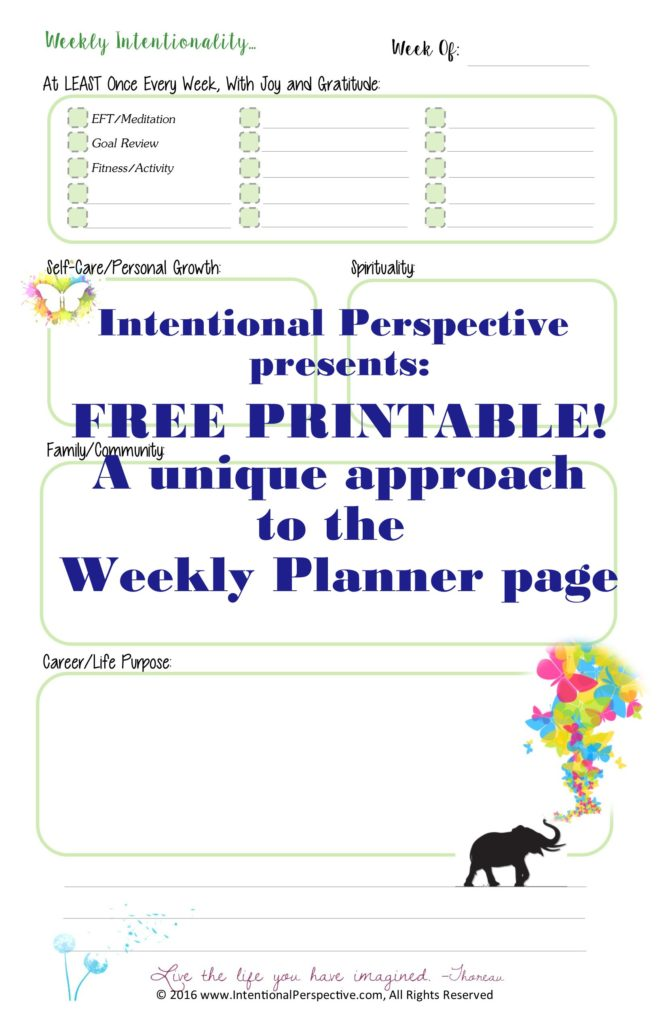 Intentional Perspective Weekly Planner 1.0 -pin
